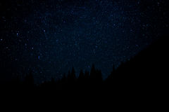 Estrelas em toda parte Fotografia de Stock Royalty Free