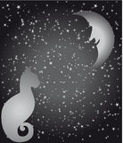 Estrelas, lua e gato Imagens de Stock