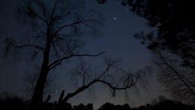 Estrelas moventes video estoque