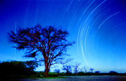 Estrelas no namib Fotografia de Stock