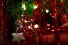 Estrelas sob a árvore de Natal Fotos de Stock
