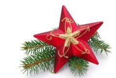Estrella con la ramita Imagen de archivo libre de regalías