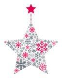 Estrella de la Navidad de los copos de nieve Imágenes de archivo libres de regalías