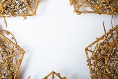 Estrella de la Navidad del oro Fotos de archivo libres de regalías
