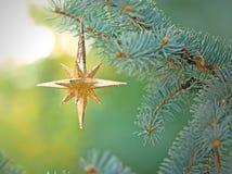 Estrella de la Navidad en el árbol de navidad Fotos de archivo libres de regalías