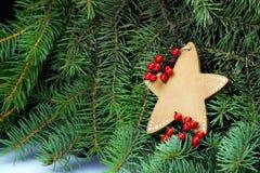 Estrella de la Navidad en el árbol de navidad Símbolo de la esperanza Fotos de archivo libres de regalías