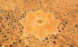 Estrella de la tierra Foto de archivo libre de regalías