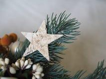 Estrella de madera en una pequeña rama de la Navidad fotos de archivo libres de regalías