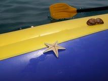 Estrella de mar imagen de archivo