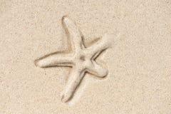 Estrella de mar bajo la arena Imágenes de archivo libres de regalías