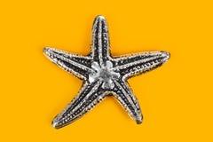 Estrella de mar del juguete Foto de archivo