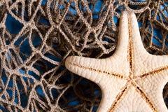 Estrella de mar en red de pesca Imagen de archivo