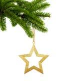 Estrella de oro de la Navidad en la rama de árbol verde aislada en blanco Imagen de archivo libre de regalías