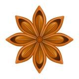 Estrella del anís en el fondo blanco Ilustración del vector Imagen de archivo libre de regalías