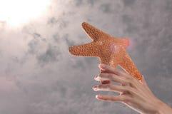 Estrella del día Imágenes de archivo libres de regalías