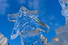 Estrella del hielo Fotografía de archivo libre de regalías