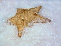 Estrella del oro en nieve Fotos de archivo