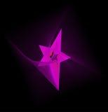 Estrella del vector Imagen de archivo