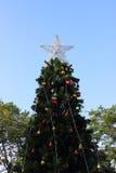 Estrella en el árbol de navidad Imagen de archivo libre de regalías