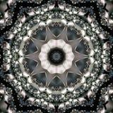 Estrella floral monocromática Fotos de archivo