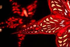 Estrella grande de la Navidad Foto de archivo libre de regalías