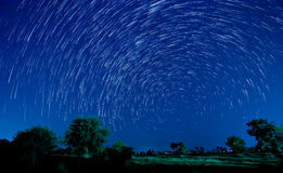 Estrella hermosa Imagen de archivo libre de regalías