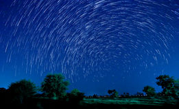 Estrella hermosa Imagen de archivo
