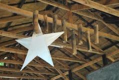 Estrella ideal Fotos de archivo libres de regalías