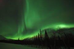 Estrella polar de la aurora Fotos de archivo