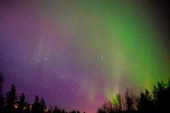 Estrella polar de la aurora Imagenes de archivo