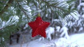 Estrella roja de la Navidad en la rama nevada del pino almacen de metraje de vídeo