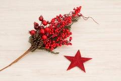 Estrella roja de la Navidad y bayas rojas Foto de archivo libre de regalías