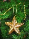 Estrella señalada del oro cinco Imagen de archivo libre de regalías