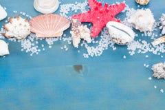 Estrella y cáscaras de mar del OS de la frontera Imagenes de archivo