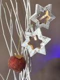 Estrellas de la Navidad y manzana de caramelo Imagen de archivo