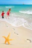 Estrellas de mar, cabritos y huellas en la playa Fotos de archivo