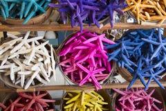 Estrellas de mar coloridas Fotos de archivo libres de regalías