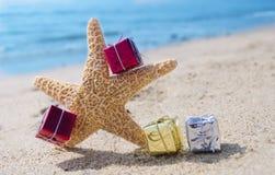 Estrellas de mar con los regalos por el océano Imágenes de archivo libres de regalías