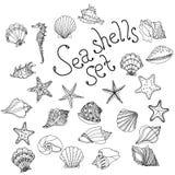 Estrellas de mar de la cáscara del mar, océano de la naturaleza de la fauna del mar del nautilus acuático libre illustration