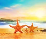 Estrellas de mar de la familia en la arena amarilla cerca del mar