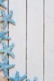 Estrellas de mar de los artículos marinos en fondo de madera Objetos del mar en tablones de madera pintados turquesa Foco selecti Imagenes de archivo