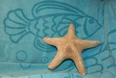 Estrellas de mar en azul Imágenes de archivo libres de regalías