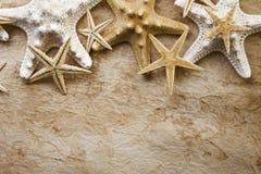 Estrellas de mar en el papel viejo Foto de archivo libre de regalías