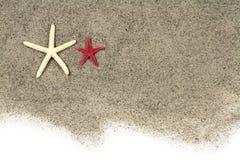Estrellas de mar en la arena de la playa Fotografía de archivo libre de regalías