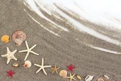 Estrellas de mar en la arena de la playa Imagen de archivo