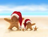Estrellas de mar en la playa del verano y el sombrero de Papá Noel Imagen de archivo