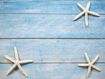 Estrellas de mar en un fondo azul del mar foto de archivo