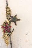 Estrellas de mar rojas y negras con el nudo y ancla en una orilla Foto de archivo libre de regalías