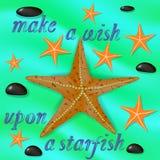 Estrellas de mar y cartel anaranjados de las piedras Fotos de archivo