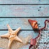 Estrellas de mar y concha espinosas con la red de pesca Imagenes de archivo